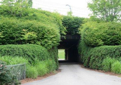 Tunnel under track