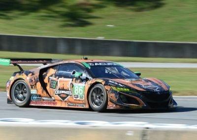 DSC_3247: Meyer Shank Racing Acura NSX of Alvaro Parente